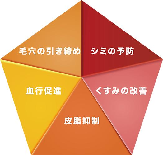 ビタミンC誘導体の5大作用